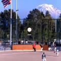 Celebration Park Baseball Tournament