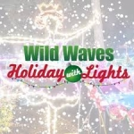 Wild Waves Holiday with Lights